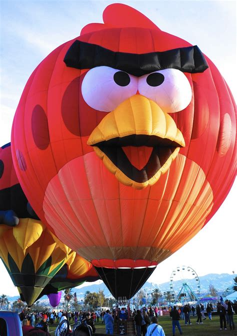Balloons take to the skies for annual Lisle fest