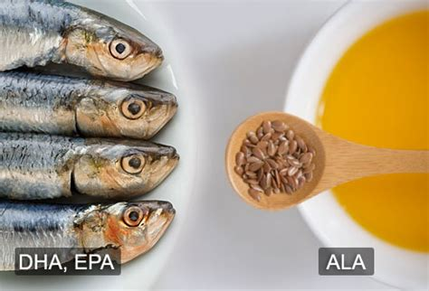 Fanatic Cook: Omega-3s On A Vegan Diet