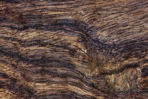 Nanostructure of Wood Revealed – Strength Gains Could Lead